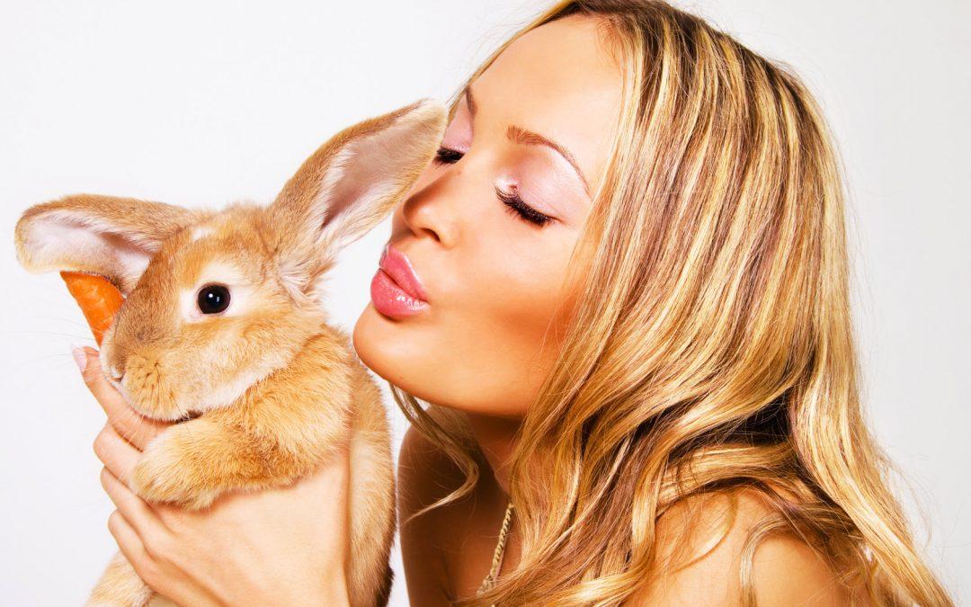 Mary Toft, mamá conejo